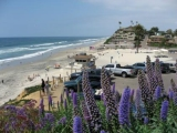 MOONLIGHT STATE BEACH