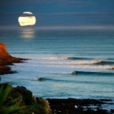 Raglan - Whale Bay